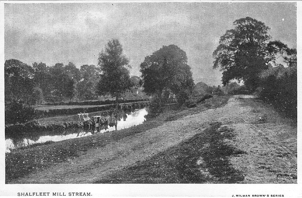 Shalfleet Mill Stream